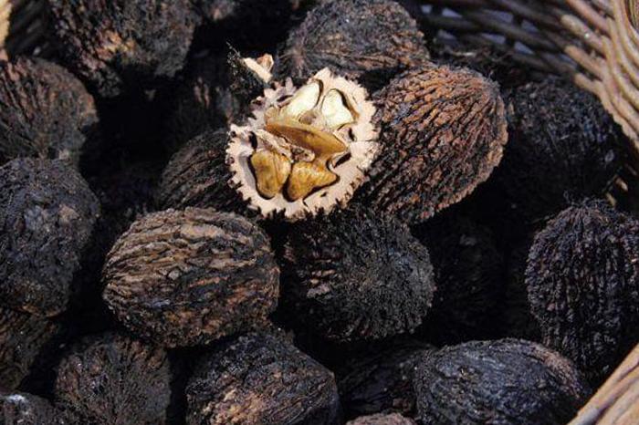 Musta pähkli ekstrakt pilt